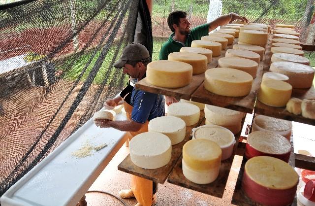 Guilherme Ferreira (ao fundo), investe em uma queijaria nos padrões estabelecidos da Lei 20.549, de 2012 -Foto: Willian Dias