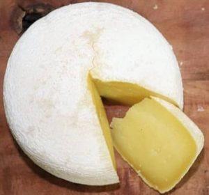 Queijo mofo branco fazenda Bicame
