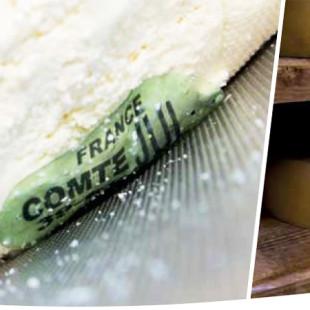 Mapa libera placa de caseína nos queijos