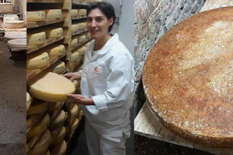 Curso de formação em Cura de queijos artesanais