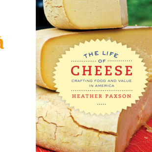 """Entenda o conceito do queijo """"pós pasteuriano"""""""
