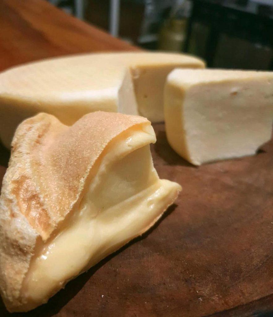 Queijo do queijo