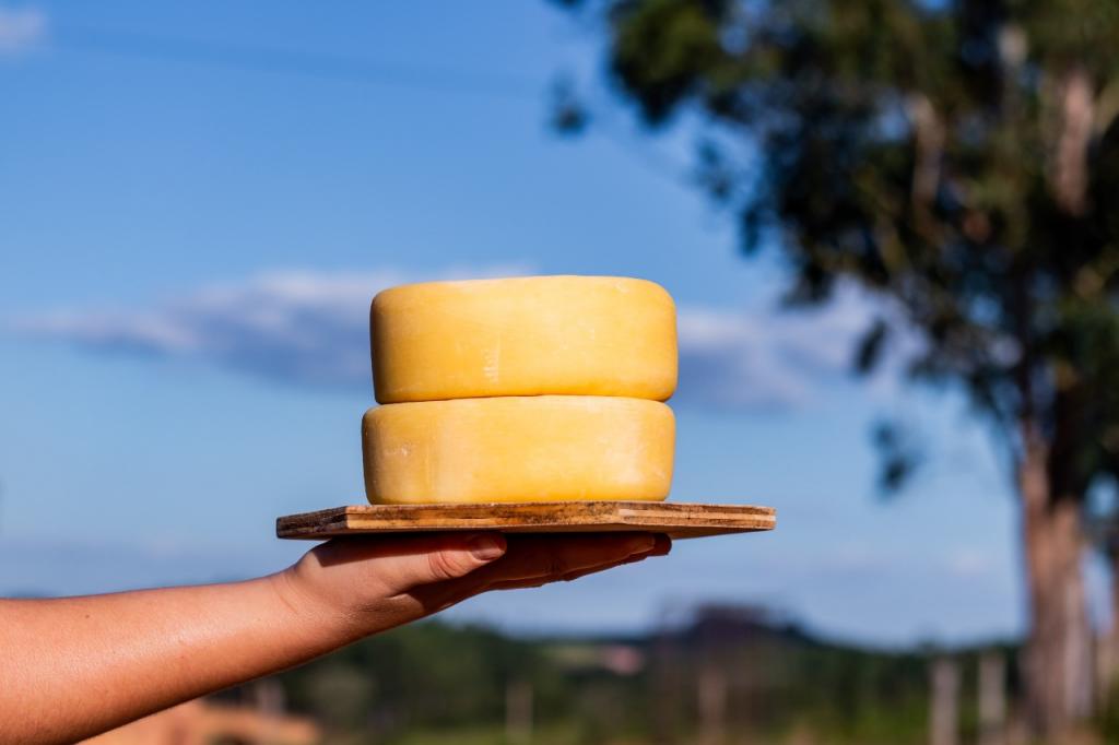 queijos diamante da canastra